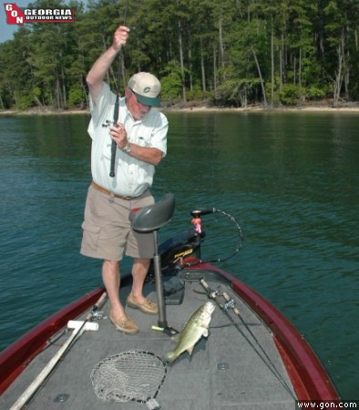 West point and clarks hill host eliminator series for Clarks hill fishing report