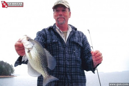 Catching clarks hill crappie deep in the timber for Clarks hill fishing report
