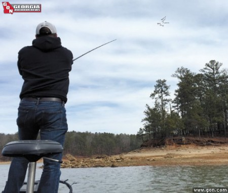 Allatoona's Homeless Spring Spotted Bass
