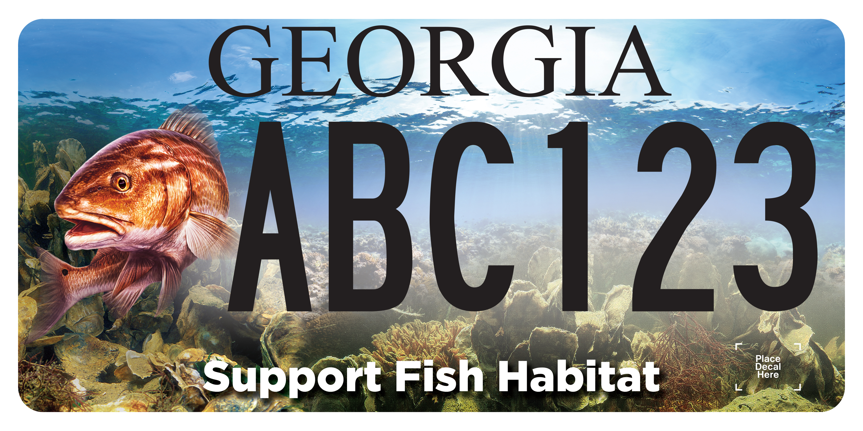 Marine Habitat License Plate Coming to Local Tag Offices