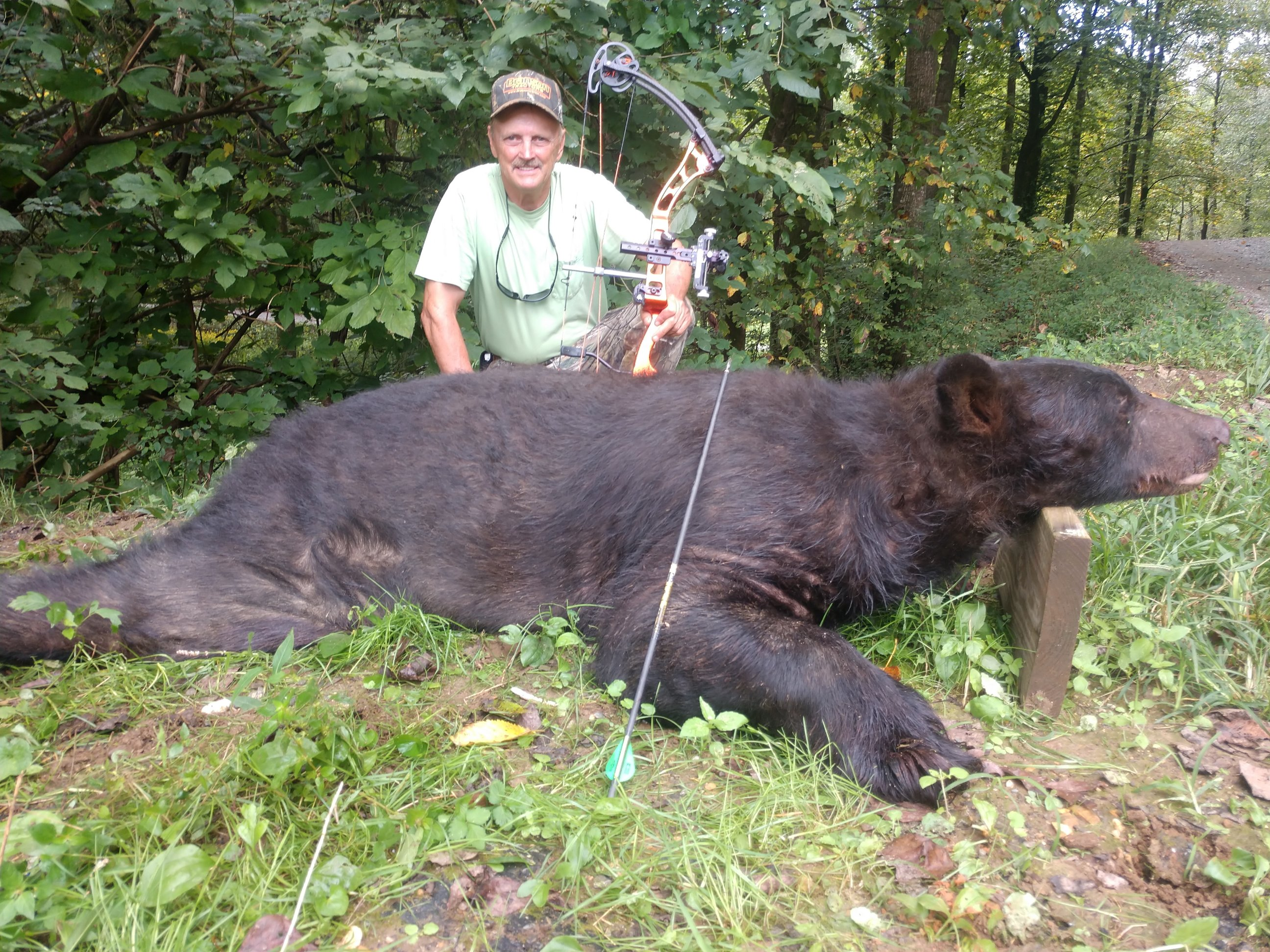 Bowhunter Takes 515 Pound Bear In Gilmer County